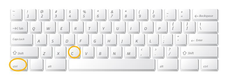 Ctrl C on the PC keyboard
