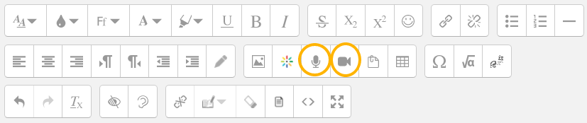 Text editor box with audio and video recording icons circled